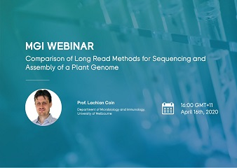 Comparison of long read methods for sequencing and assembly of a plant genome